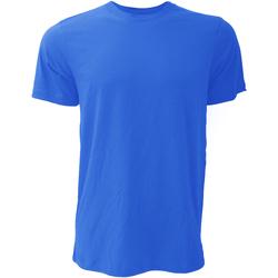 Vêtements Homme T-shirts manches courtes Bella + Canvas Jersey Bleu royal