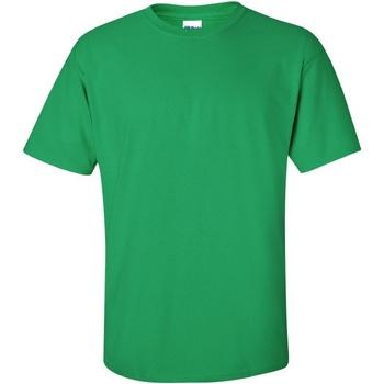 Vêtements Homme T-shirts manches courtes Gildan Ultra Vert irlandais