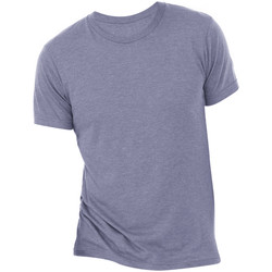Vêtements Homme T-shirts manches courtes Bella + Canvas Triblend Denim