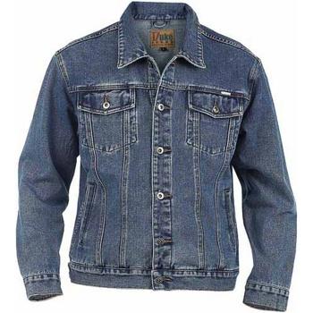 Vêtements Homme Vestes en jean Duke Trucker Bleu