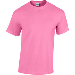 Vêtements Enfant T-shirts manches courtes Gildan 5000B Azalée