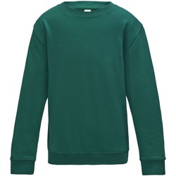 Vêtements Enfant Sweats Awdis Plain Jade