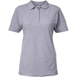 Vêtements Femme Polos manches courtes Gildan Pique Gris clair