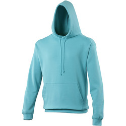 Vêtements Sweats Awdis Hooded Bleu opaline
