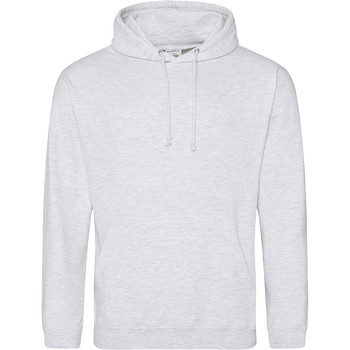Vêtements Sweats Awdis Hooded Gris clair