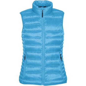 Vêtements Femme Doudounes Stormtech Quilted Bleu électrique