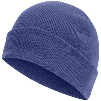 Accessoires textile Bonnets Absolute Apparel Knitted Bleu roi