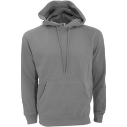 Vêtements Homme Sweats Sg Hooded Gris