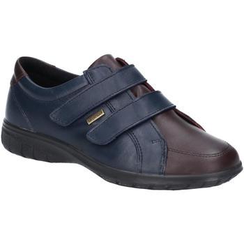 Chaussures Femme Baskets basses Cotswold Haythrop Bleu marine / marron