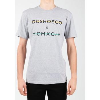 Vêtements Homme T-shirts manches courtes DC Shoes DC SEDYZT03760-KNFH szary