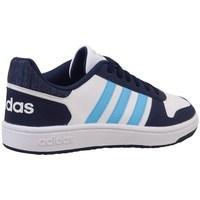 Chaussures Enfant Baskets basses adidas Originals Hoops 20 K Blanc, Bleu marine
