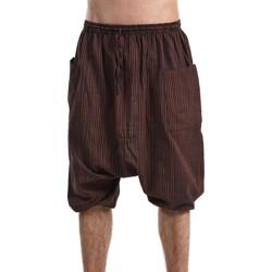 Vêtements Homme Calvin Klein Jeans Fantazia Saroual bermuda grande taille homme femme coton leger Marron