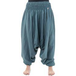 Vêtements Homme Pantalons fluides / Sarouels Fantazia Pantalon sarouel elastique uni aladin sarwel indien Gris-Bleu