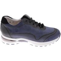 Chaussures Femme Randonnée Calzaturificio Loren CLORA1068bl blu