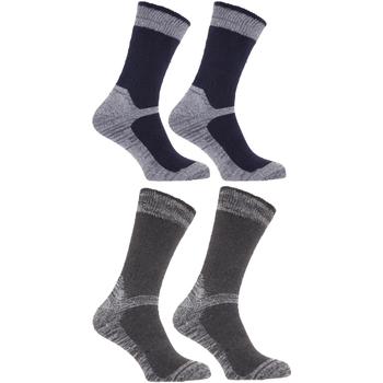 Accessoires Homme Chaussettes Universal Textiles  Bleu marine/Gris