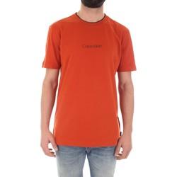 Vêtements Homme T-shirts manches courtes Calvin Klein Jeans K10K104934 orange