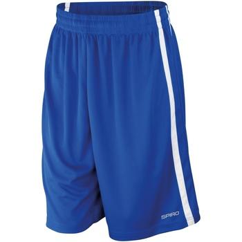Vêtements Homme Shorts / Bermudas Spiro S279M Bleu roi/Blanc