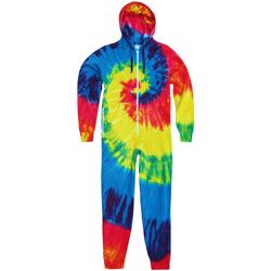 Vêtements Homme Combinaisons / Salopettes Colortone TD36M Arc-en-ciel
