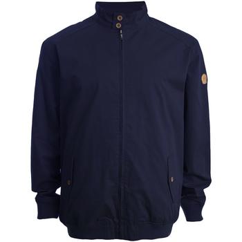 Vêtements Homme Blousons Duke Windsor Bleu marine