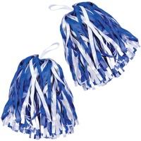 Accessoires Accessoires sport Bristol Novelty  Bleu / blanc
