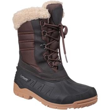 Chaussures Femme Bottes de neige Cotswold  Marron