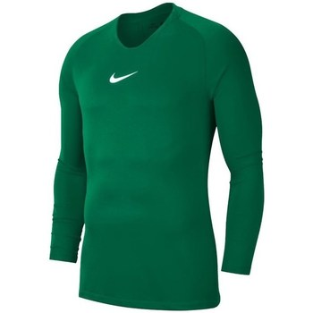 Vêtements Homme T-shirts manches longues Nike Dry Park First Layer Vert