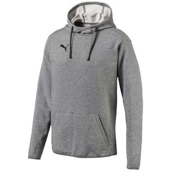 Vêtements Homme Sweats Puma Liga Casuals Hoody Gris