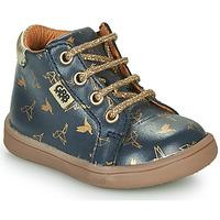 Famia,Bottines / Boots,Famia