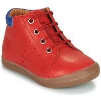 Tido,Bottines / Boots,Tido