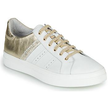 Chaussures Fille Baskets basses GBB DANINA Blanc / Doré