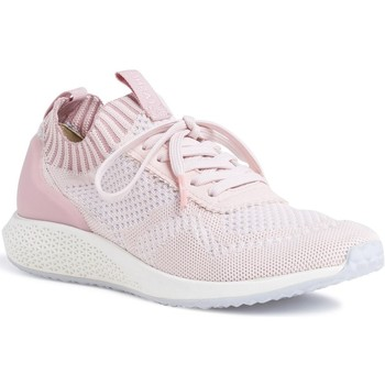 Chaussures Femme Baskets basses Tamaris 23714 rose