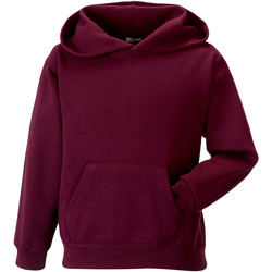 Vêtements Enfant Sweats Jerzees Schoolgear Hooded Bordeaux
