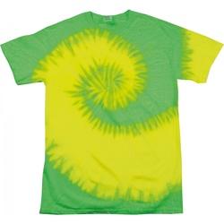 Vêtements Femme T-shirts manches courtes Colortone Rainbow Vert fluo