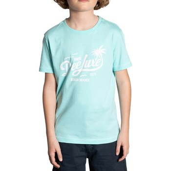 Vêtements Garçon T-shirts manches courtes Deeluxe T-Shirt AKAU Lagon