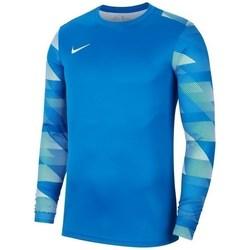 Vêtements Homme Sweats Nike Dry Park IV Bleu