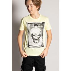 Vêtements Garçon T-shirts manches courtes Deeluxe T-Shirt CRYSTAL Lemon