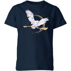 Vêtements T-shirts manches courtes Harry Potter  Bleu