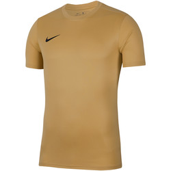 Vêtements Homme T-shirts manches courtes Nike Dry Park VII SS Jersey Braun