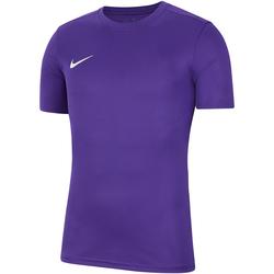 Vêtements Homme T-shirts manches courtes Nike Dry Park VII SS Jersey Violett