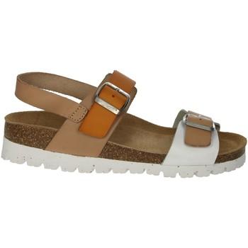 Chaussures Femme Tous les sacs Je souhaite recevoir les bons plans des partenaires de Jmksport Riposella C129 Beige/Blanc