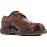 Chaussures Homme Derbies Soldini  Marrone