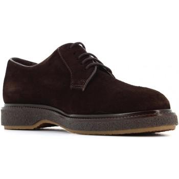 Chaussures Homme Derbies Soldini  Testa di moro