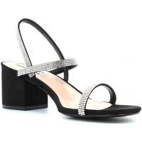 Chaussures Femme Sandales et Nu-pieds Steve Madden ISTA-R Nero