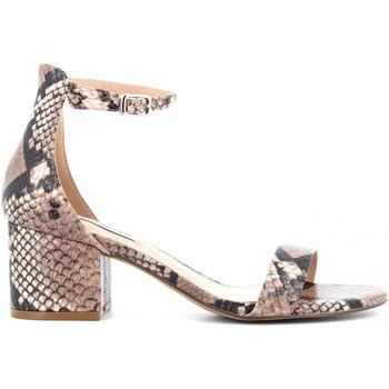 Chaussures Femme Sandales et Nu-pieds Steve Madden IRENEE Pitonato