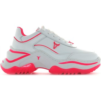 Chaussures Femme Baskets basses Windsor Smith CHAOS Bianco / fucsia