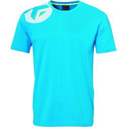 Vêtements Enfant T-shirts manches courtes Kempa T-shirt junior  Core 2.0 bleu flash/gris