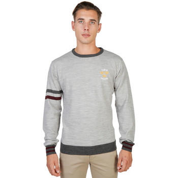 Vêtements Homme Pulls Oxford University - oxford_tricot-crewneck Gris