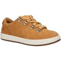 Chaussures Enfant Derbies & Richelieu Timberland A23QJ DAVIS Beige