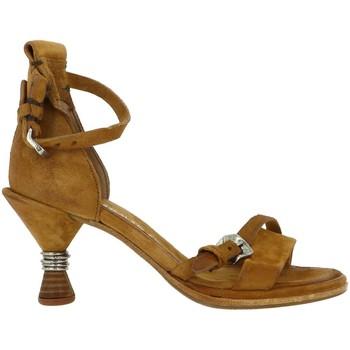 Chaussures Femme Sandales et Nu-pieds Airstep-As98 CHELA Marron