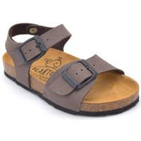 Chaussures Garçon Sandales et Nu-pieds Plakton louis Marron